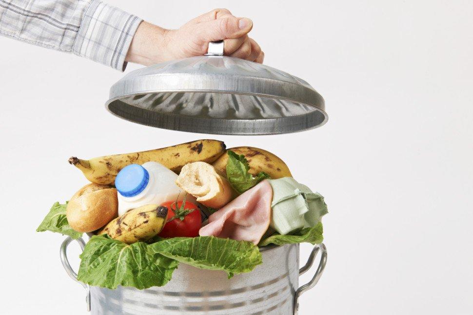 Como evitar o desperdício de alimentos? Saiba mais!