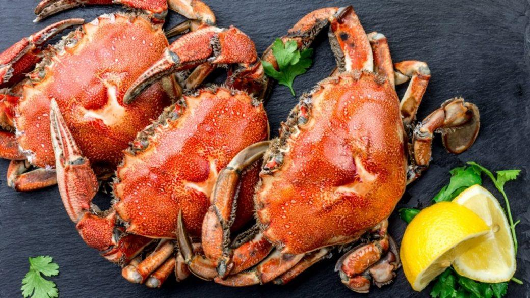 Guia frutos do mar: os benefícios do consumo do caranguejo