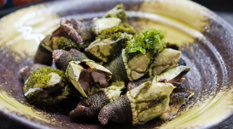 Frutos do mar exóticos: conheça mais sobre eles